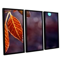 'Fall Lights' 3 Piece Floater Framed Canvas Art Print Set, 36x54