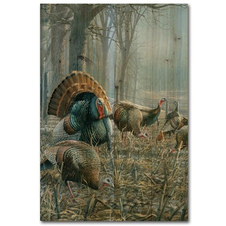 Anderson Gallery (WGI-GALLERY Spring Strut by A. Anderson Painting Print Plaque )