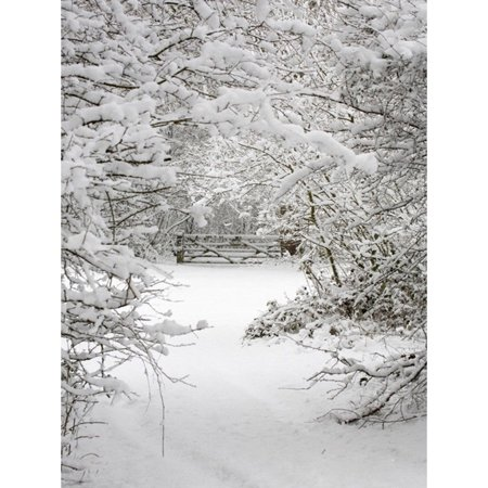 3x5FT Winter Snow Studio Backdrop Forest Wood Branch Photography Photo Background - Winter Photo Props