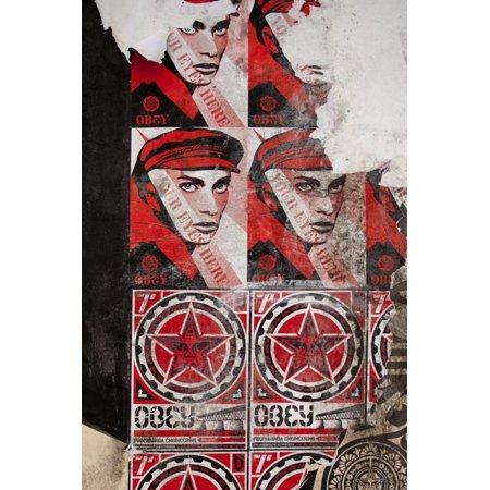 Shepard Fairey Art (Shepard Fairey Posters, Copenhagen, Denmark Print Wall Art )