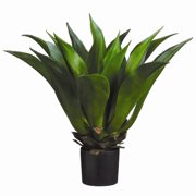 Tori Home Gaint Mexican Agave Desk Top Plant in Pot Liner Liner