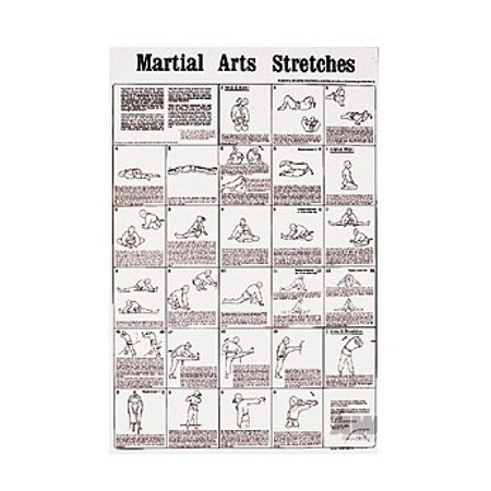- Martial Arts Stretches Poster
