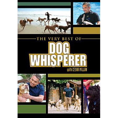 Very Best Of Dog Whisperer (Widescreen)