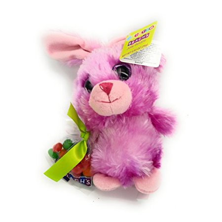 Animals In A Suit (Galerie Animal Rabbit Plushies in Pink Bunny suit with Brachs Jelly Beans package Gift for)