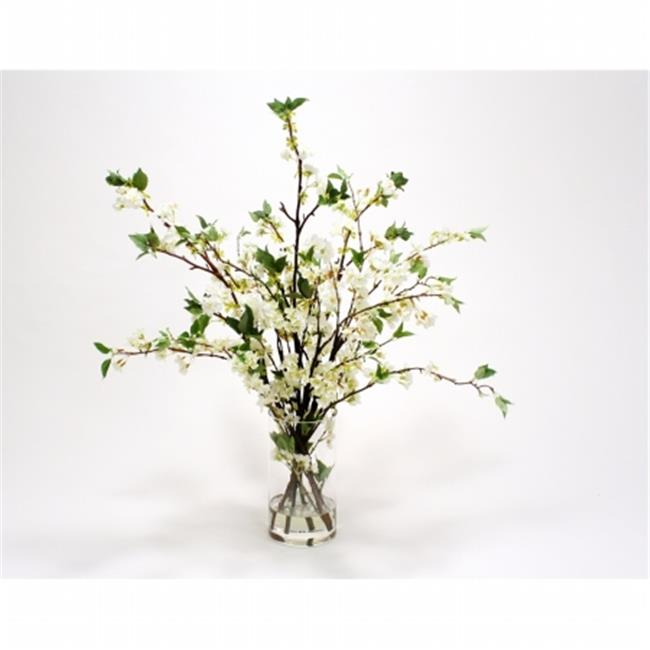 Distinctive Designs International 17019 White Cherry Blossoms in Clear Glass Cylinder