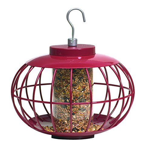 Gardman Usa NT051 The Nuttery Seed Feeder Classi