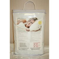 Austin-Taperly H14310 Rest-guard Bed Bug Mattress Cover - 10 in. Queen