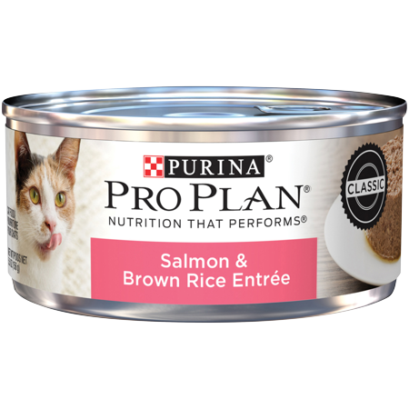 (24 Pack) Purina Pro Plan Pate Wet Cat Food, Salmon & Brown Rice Entree, 5.5 oz. Cans