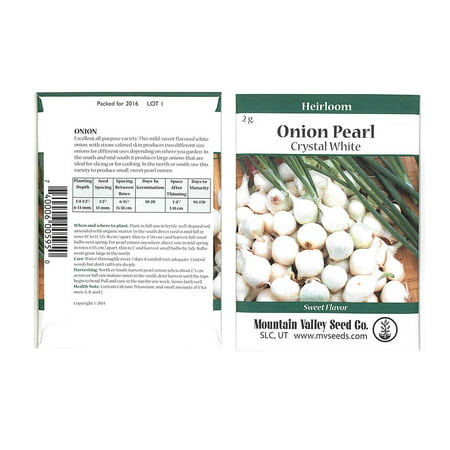 Crystal White Wax Pickling Onion Garden Seeds - 2 Gram Packet - Non-GMO, Heirloom Vegetable Gardening (Best Vinegar For Pickling Onions)