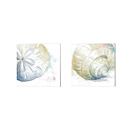 """Great Art Now Water Sand Dollar & Conch by Patricia Pinto 2 Piece Canvas Art Set Each 14""""W x 14""""H"""