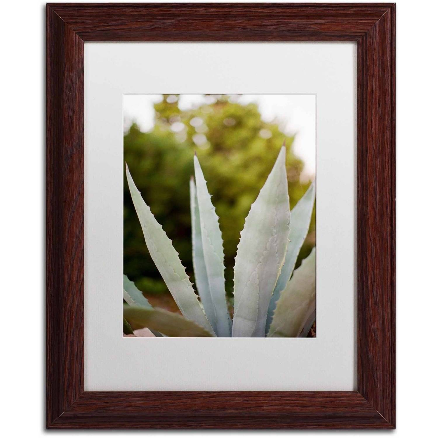 Trademark Fine Art 'Succulents' Canvas Art by Ariane Moshayedi, White Matte, Wood Frame