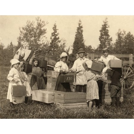 Migrant Workers C1910 Na Group Of Young Workers Carrying In Their Pecks Of Cranberries To The Bushel Man For Weighing At Theodore BuddS Bog At Turkeytown Near Pemberton New Jersey (Mall Near New Jersey)