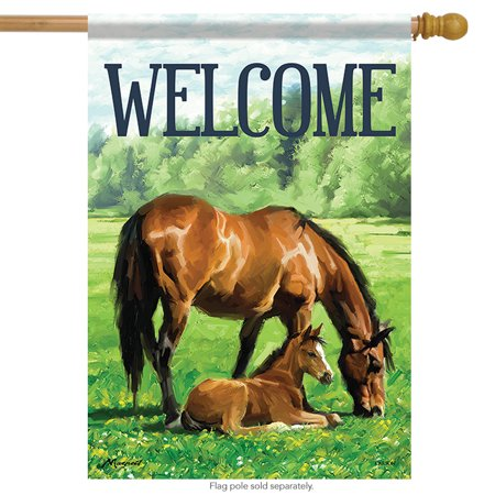 Foal Stable (Mother & Foal Horse House Flag Welcome Stable Spring Farm 28