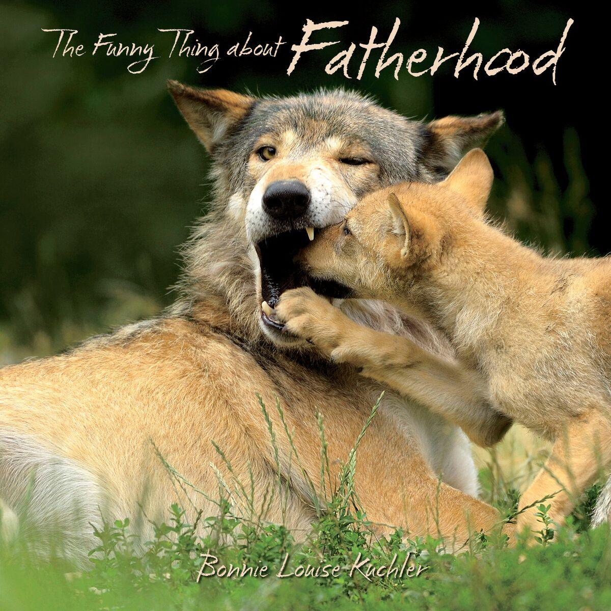 Funny Thing about Fatherhood (Hardcover) by Willow Creek Press