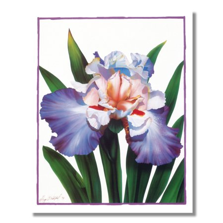 Iris Flower Floral Arrangement Wall Picture 8x10 Art Print