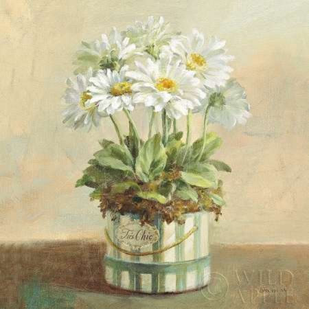 - Tres Chic Daisies Canvas Art - Danhui Nai (24 x 24)