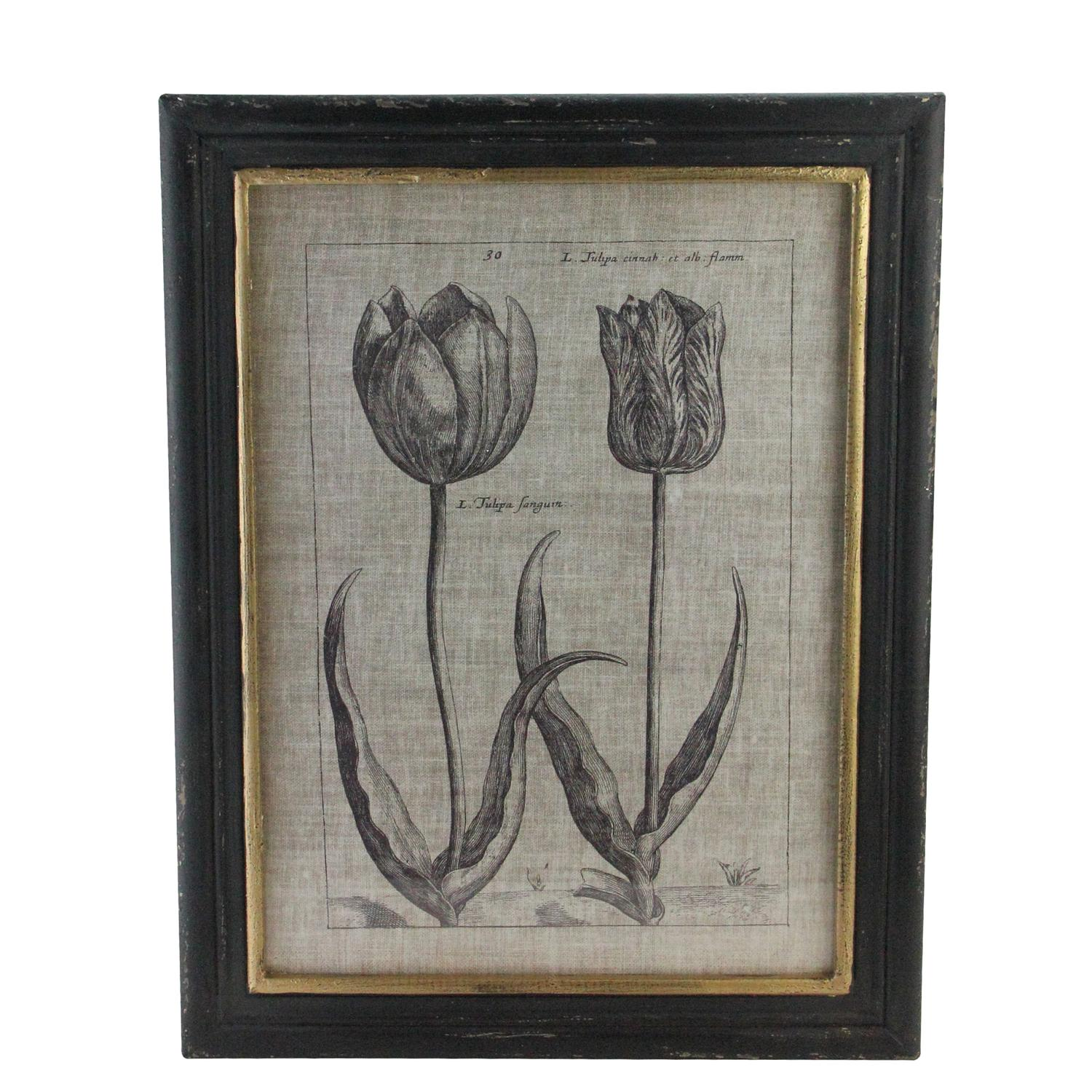"18"" Botanic Beauty Decorative Vintage Style Double Tulip Print Framed Wall Art"
