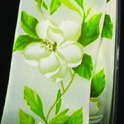 """Ivory and Green Woven Print """"Magnolia"""" Wired Craft Ribbon 2.5"""" x 20 Yards"""