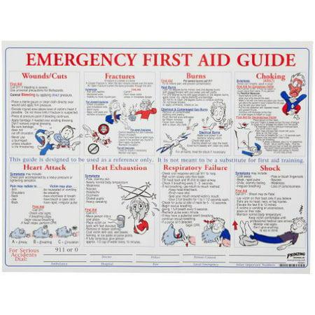Brady PS128E Prinzing First Aid Training Poster