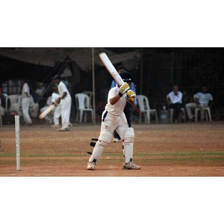 Canvas Print Batsman Competition Ball Game India Player Cricket Stretched Canvas 10 x (Best Cricket Ball Brand In India)