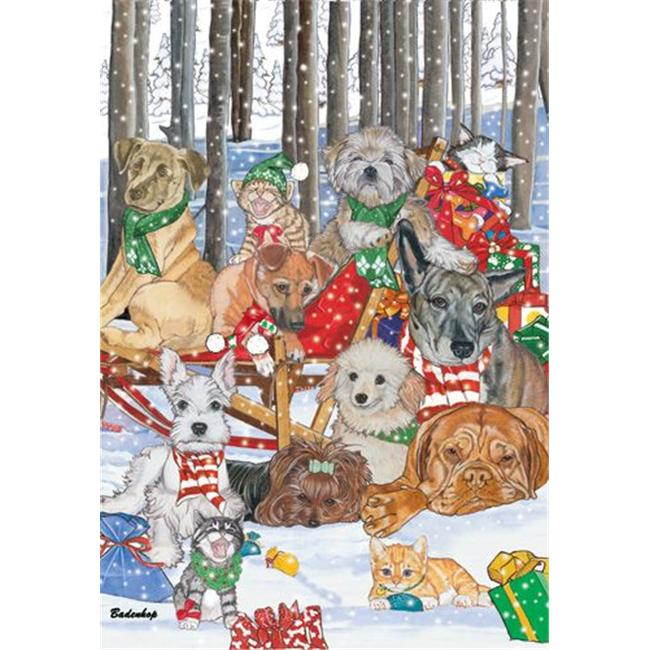 Pipsqueak Productions C517 Mix Dog With Cat Holiday Boxed Cards