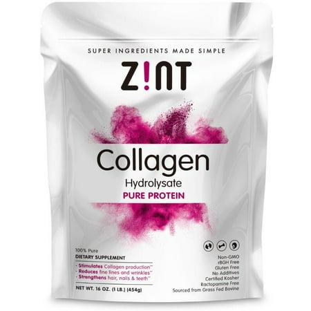 1 Lb Ground Beef Recipes - Zint Collagen Hydrolysate Powder Grass Fed Kosher Beef Collagen Peptides 1 Lb (10 Pack)