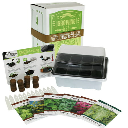 Indoor Culinary Herb Garden Starter - Basic Kit - 6 Non-GMO Varieties - Grow Cooking Herbs & Spices - Seeds: Basil, Dill, Parsley, Chives, Mustard, Oregano (Childrens Seed Kit)