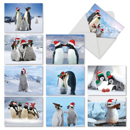 M2951XSG PENGUINS AND GREETINGS' 10 Assorted Merry Christmas Greeting Cards Featuring Holiday Penguins in Their Natural Surroundings, with Envelopes by The Best Card