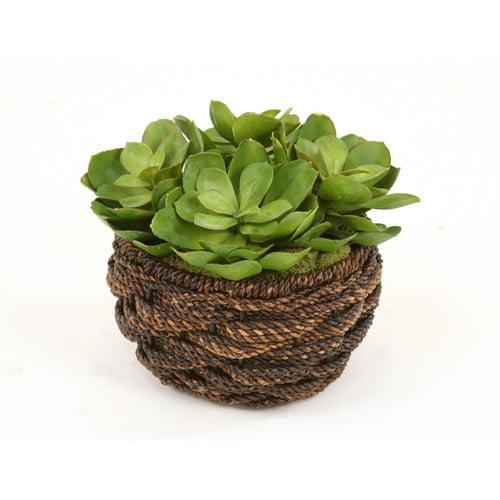 Distinctive Designs Artificial Hen and Chicken Succulents Desk Top Plant in Basket (