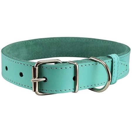 Aqua Show Dog Collar (Genuine Leather Dog Collar Cyan 4 Sizes (16