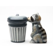 Racoon in Garbage Trash Can Magnetic Salt and Pepper Shaker Set
