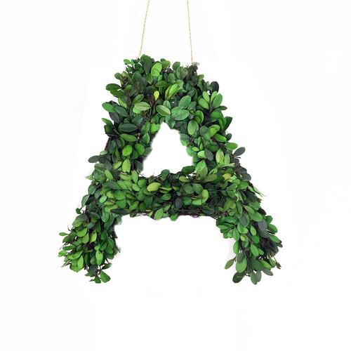 Vandue Corporation Modern Home 8'' Boxwood Wreath