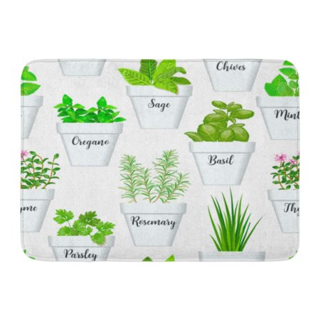 GODPOK Big of Culinary Herbs in White Pots with Labels Green Growing Basil Sage Rosemary Chives Thyme Parsley Rug Doormat Bath Mat 23.6x15.7 inch](Halloween Stores In Green Bay)