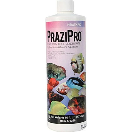 Aquarium Solutions PraziPro Parasite Treatment-16Oz