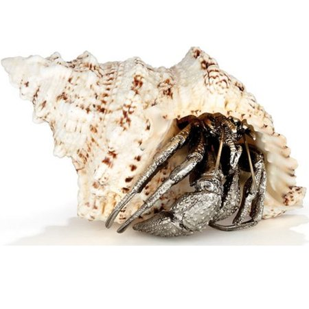 New Metal Shell (Hermit Crab Sea Shell Pewter Metal Sculpture Figurine Sea Life Decoration New )