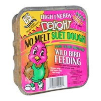C&S High Energy Delight Suet, 11 oz
