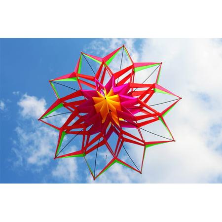 Ktaxon Large Single Line Lotus Flower Box Kite 59 3d Diamond Kite