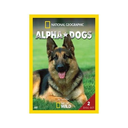 NG ALPHA DOGS (DVD/2DISCS/WS) (DVD)