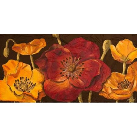Dazzling Poppies I Canvas Art - Josefina (10 x 20)