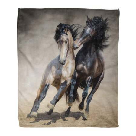 KDAGR Flannel Throw Blanket Gallop Red Gray Spanish Stallion Play Dun in Sand Soft for Bed Sofa and Couch 58x80