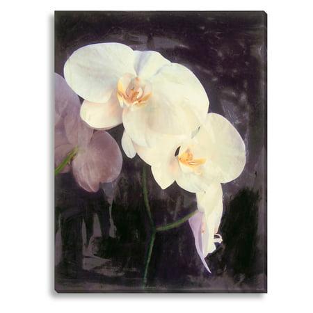 Gallery Direct Midnight Garden II Indoor/Outdoor Canvas Print by Sara (Gallery Midnight Garden)