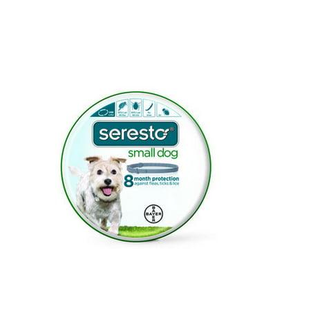 Bayer Seresto Flea And Tick Collar Small Walmart Com
