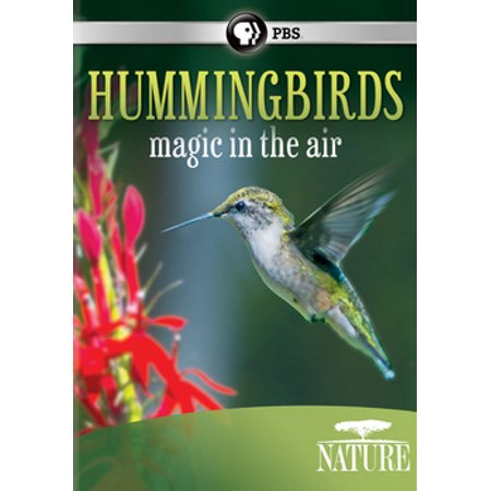 Bird Movie For Kids (Nature: Hummingbirds - Magic in the Air)