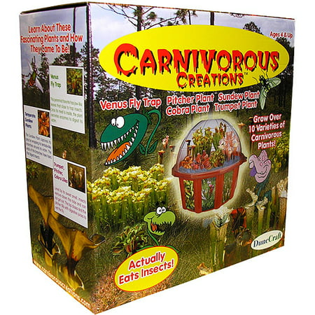Carnivorous Creations - Plant Growing Kit