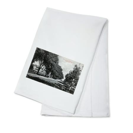 Bloomington, Illinois - East Washington Street Scene (100% Cotton Kitchen Towel) (Party City Bloomington Illinois)
