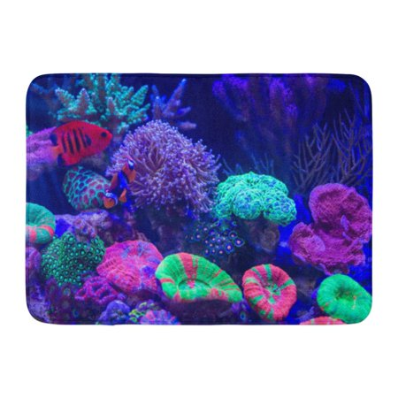 GODPOK Blue Animal Clownfish As Known Anemonefish Long Polyps Stony Coral to Be Such Torch Brown Aquarium Rug Doormat Bath Mat 23.6x15.7 inch (Stony Corals)