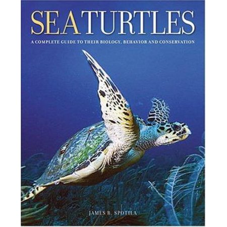 Sea Turtles  A Complete Guide To Their Biology  Behavior  And Conservation