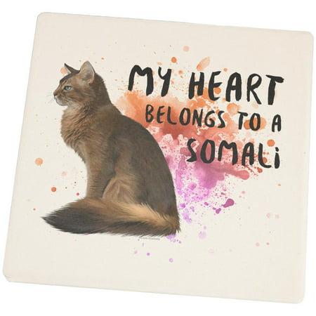 My Heart Belongs Somali Cat Set of 4 Square Sandstone Coasters