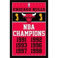 Chicago Bulls 22.4'' x 34'' NBA Champions Poster