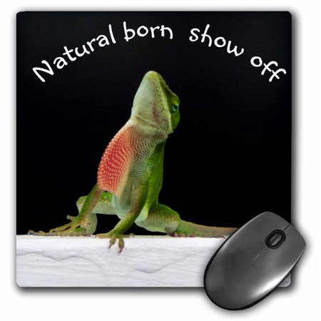 3dRose Green Anole Lizard Natural Born Show off - Mouse Pad, 8 by -